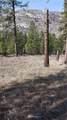 4004 Northport Flat Creek Road - Photo 17