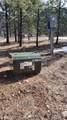 4004 Northport Flat Creek Road - Photo 32