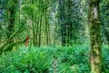 5865 Old Woods Lane - Photo 10