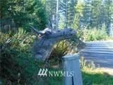 0 Trudeau Mountain Road - Photo 4