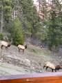 84 Meadow Ridge Drive - Photo 24