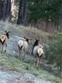 84 Meadow Ridge Drive - Photo 25