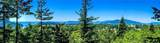 3804 Marine Heights Way - Photo 6