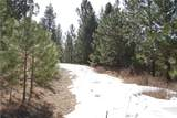 1 Stagecoach Trail - Photo 3