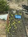 16810 Salmon La Sac - Photo 2