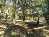 153 Kodiak Lane - Photo 18