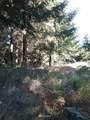 153 Kodiak Lane - Photo 6
