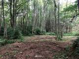 0 Forest View Lane - Photo 2