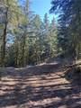 0 Nahahum Canyon Road - Photo 10