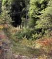 99 O'brien Creek Road - Photo 34