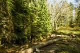 4965 Helppie Lane - Photo 9