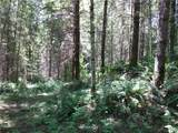 0 Bear Claw Lane - Photo 19
