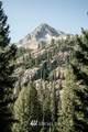 720 Stone Ridge Drive - Photo 2