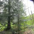 10337 Glacier Rim Drive - Photo 1