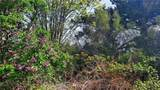 4067 Monkey Hill Road - Photo 14
