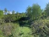 650 Tbd Ellemeham Mtn Road - Photo 31