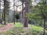 9 Salmon La Sac Road - Photo 2