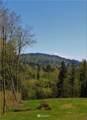 17600 Cougar Mountain Drive - Photo 5