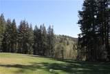 17600 Cougar Mountain Drive - Photo 9