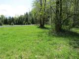 0 Mineral Creek Road - Photo 10