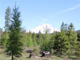 0 Mt. Adams Recreation Area Road - Photo 1