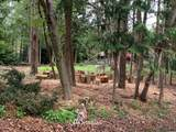 669 Muckleshoot Circle - Photo 6