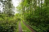 13 Reiner Road - Photo 4