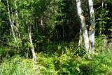 99 Bagley Creek Road - Photo 3
