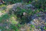 11910 Alpine Drive - Photo 16