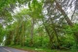 0 Germany Creek Road - Photo 10