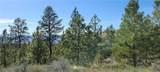 0 Siwash Creek Road - Photo 1