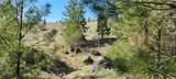 0 Siwash Creek Road - Photo 5