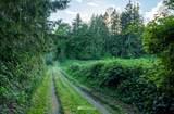 5208 Lackey Road - Photo 5