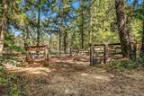 551 Pioneer Trail - Photo 22
