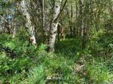 0 Lost Valley Road - Photo 2