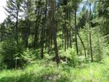 0 TBD Kettle River Road - Photo 13
