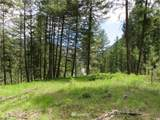 0 TBD Kettle River Road - Photo 10