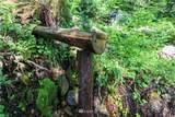 2321 Cushman Ridge - Photo 23