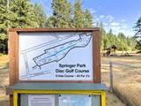 221 Park Loop - Photo 29