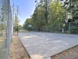 221 Park Loop - Photo 32