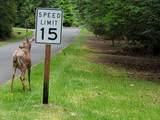 476 Chesapeake Drive - Photo 35