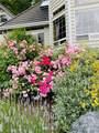 13268 Westridge Drive - Photo 37