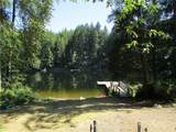 0 Collins Lake #1 Lot 61 - Photo 14