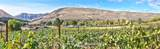 411 Roza View Drive - Photo 2