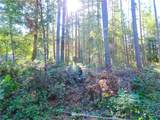 12543 Bear Track Lane - Photo 30