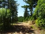 2 Owl Ridge Drive - Photo 3