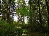 0 Woods Lake Road - Photo 11