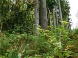 0 Woods Lake Road - Photo 8