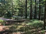 119 Schinn Canyon Circle - Photo 5