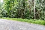 0 Tani Creek Lot L1 Road - Photo 8